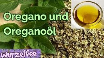 Heilmittel Oregano / Oreganoöl I Wirkungen und Anwendungen