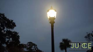 Savannah State University: Sigma Gamma Rho Founders Day 2016
