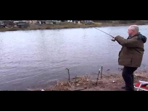как ловить корюшку весной в калининграде