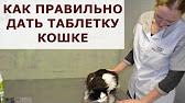 GIGI УРО-УРСИ для профилактики МКБ 14капс купить по низкой цене в .