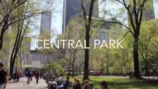 A Family Day Out in Central Park thumbnail
