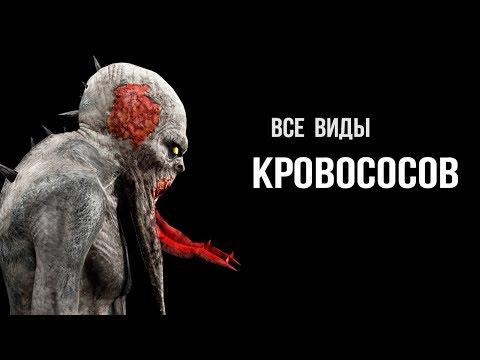 5 видов Кровососов