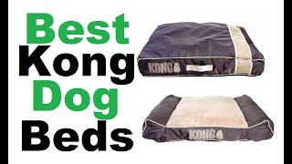kong dog bed - Best kong dog beds ||