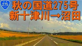【車載動画】秋の国道275号 新十津川から沼田(4倍速)