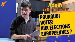 Pourquoi voter aux élections européennes ?