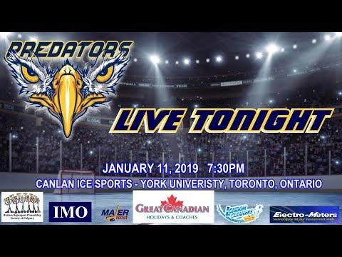 Toronto Predators Live Gmhl Junior Hockey League