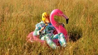 Hartz 4 und der Tag gehört dir -  der zweite Partyhit von Ingo ohne Flamingo thumbnail