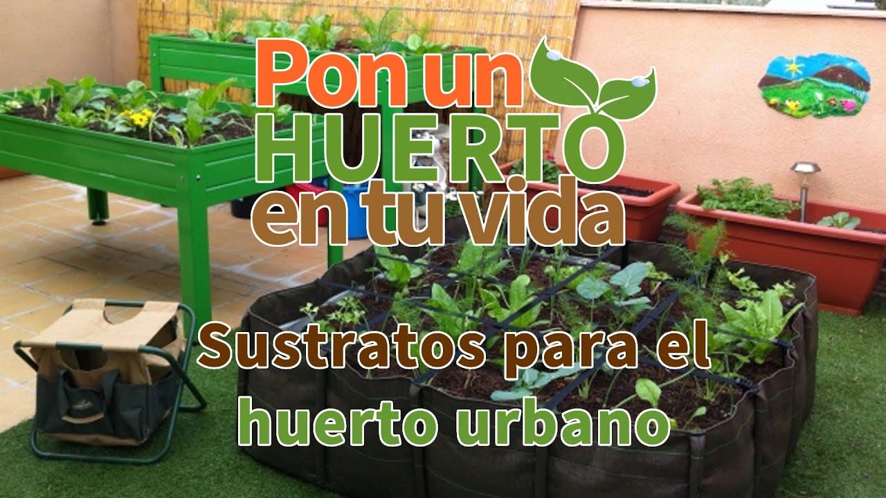 Huerto Urbano 8 Pasos Cómo Hacer Huerta En Casa Y Terrazas Superguía