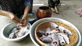 NKMT | Xem người dân miền tây làm mắm cá như thế nào?? | Fishing
