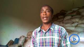 Seaweed farmers in Kwale county decry lack of market