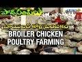 Success story of Broiler Poultry Farmer - Krishna District | Paadi Pantalu