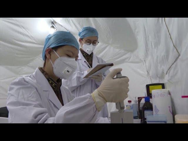 La Argentina autorizó a realizar ensayos clínicos de una vacuna china contra el coronavirus