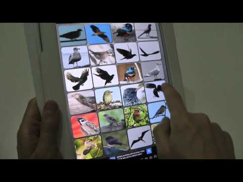 Free Birds Sounds Soundboard App for Android, iPhone and iPad