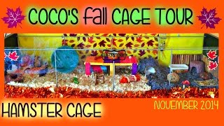 Coco's FALL Hamster Cage Tour! November 2014 Thumbnail