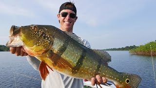 GIANT AMAZON PEACOCK BASS! | Fishing Peacock Bass in the Amazon pt.3