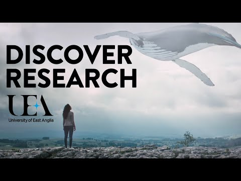 Discover UEA | University of East Anglia (UEA)
