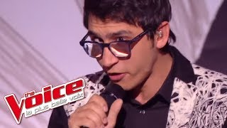a ha     take on me   vincent vinel   the voice 2017  finale