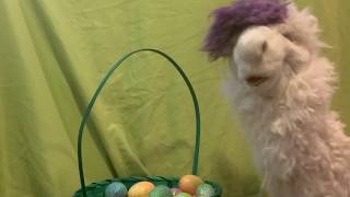 Lollipop's Easter Sprinkle: How to Hide An Egg