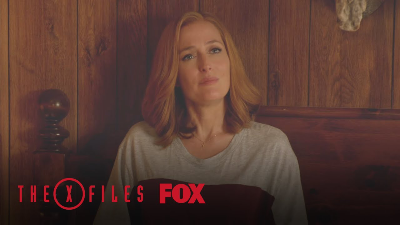 Download Mulder Describes The Monster | Season 10 Ep. 3 | THE X-FILES