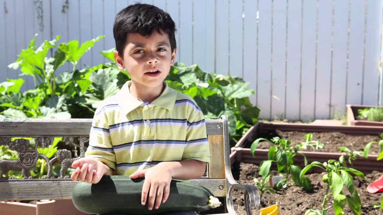preschool nutrition gardening teach kids healthy eating habits choosehealthlacom
