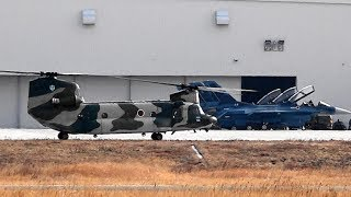 CH-47J チヌークのタキシングと離陸。