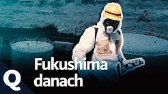 Fukushima – Ende nicht in Sicht (Ganze Doku) | Quarks