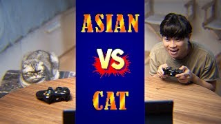 Street Fighter: ASIAN vs. CAT