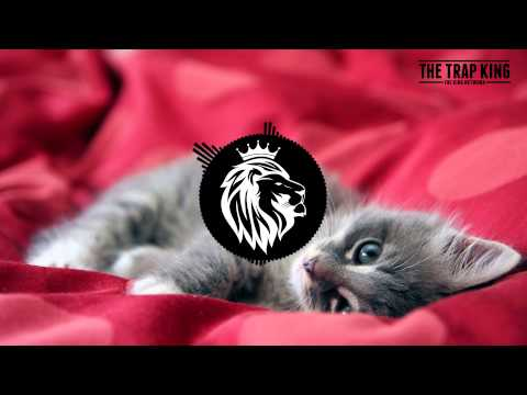 Ty Dolla Sign ft Charli XCX x Tinashe - Drop That Kitty (Club Killers Remix)