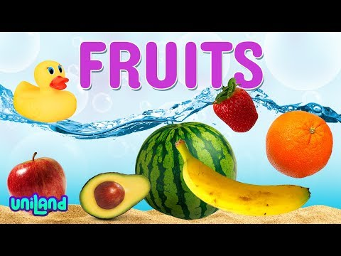 Sink Or Float Challenge: Fruit | UniLand Kids