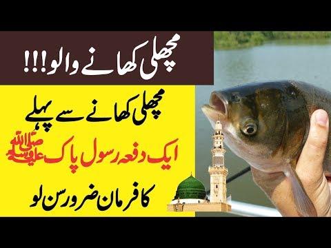 Fish Khane Wale Aik Dafa Rasool Pak SAW (PBUH) Ka Farman Sun Lain