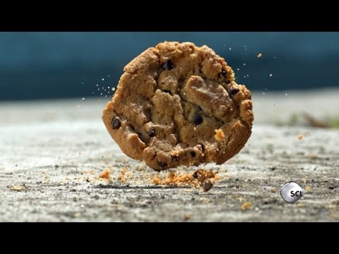 Thumbnail: Science Shows The 5-Second Rule is Real Most of the Time