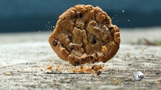 Science Shows The 5-Second Rule is Real Most of the Time