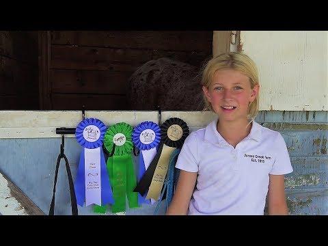 Horse Jump Show, State Fair