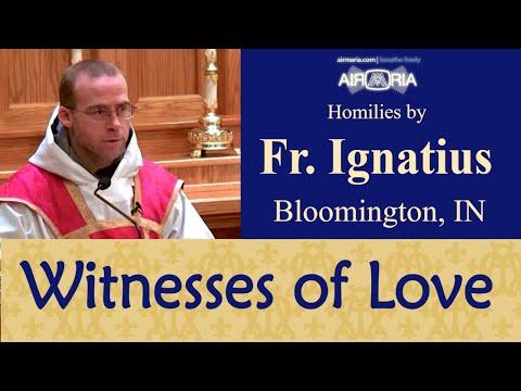 Witnesses to Love - Nov 23 - Homily - Fr Ignatius