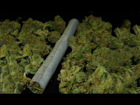 Усатая Америка #2 - Где купить марихуану?