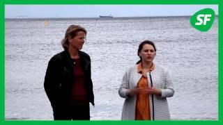 Øresund som marinepark