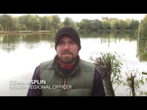 Fishery Focus - Trinity Waters