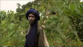 L'élevage dans la ceinture de tsé-tsé en Afrique de l'Ouest du bétail : résumé