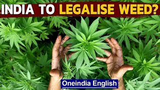 Cannabis reclassified by UN | UN cites weed's medical benefits | Oneindia News