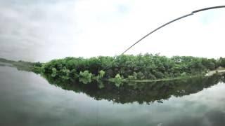 360 Degree Zipline - Treetop Trekking
