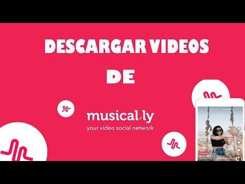 Como descargar vídeos de musical.ly a tu movil