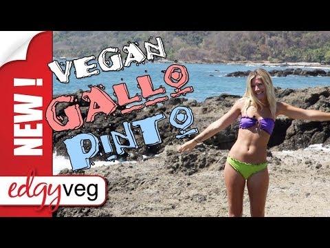 Vegan Recipe: Gallo Pinto in Costa Rica | Edgy Veg