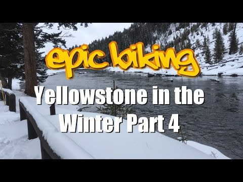 How to Snowshoe in Yellowstone National Park
