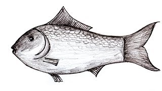 Wood pencil Art,,Art a fish easily,3D art on paper by hand for who loves Drawing,