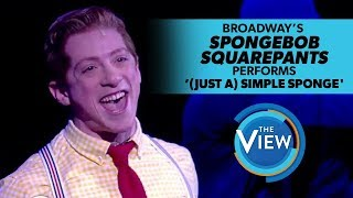 Cast Of Spongebob On Broadway Performs '(Just A) Simple Sponge' on 'The View'