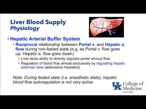 Hepatic Physiology and Anesthesia - Dr. Schell