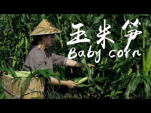 VLOG: DIANXI XIAOGE OF YUNNAN PROVINCE (SOUTHWEST CHINA)