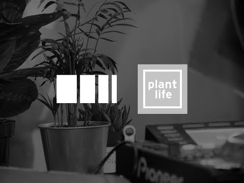 Jack Blount (Event Set) - Plant Life x Side Sound
