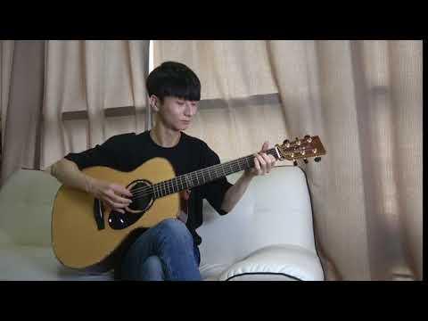 (Maroon 5) Girls Like You - Sungha Jung