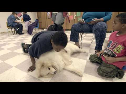 Home for Life's animals assist in outreach programs